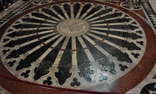 Zdjecie WłOCHY / Toskania / Siena / Siena, katedra, podłoga