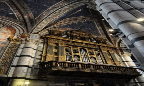 Zdjęcie WłOCHY / Toskania / Siena / Siena, katedra