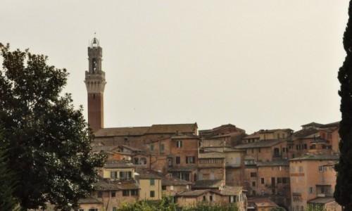 Zdjęcie WłOCHY / Toskania / Siena / Siena, mała panorama