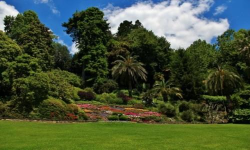 Zdjęcie WłOCHY / Lombardia / Tremezzo / Ogród botaniczny w Tremezzo
