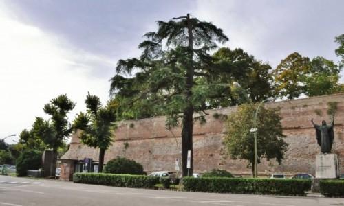 Zdjęcie WłOCHY / Toskania / Siena / Siena, forty