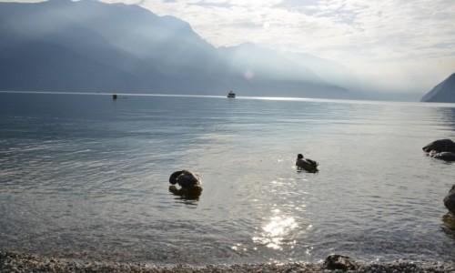 Zdjecie WłOCHY / Trentino / Jezioro Garda / Jezioro Garda 3