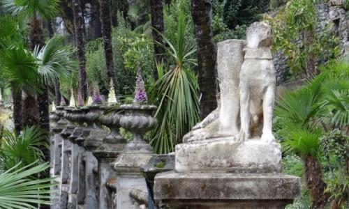 WłOCHY / Lombardia  / Varenna / Villa Monastero - ogród
