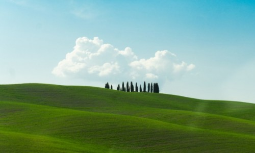 WłOCHY / Toskania / Toskania / Magia samotnych cyprysów