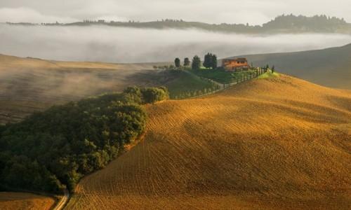 WłOCHY / Toskania / okolice Pienzy / Farma