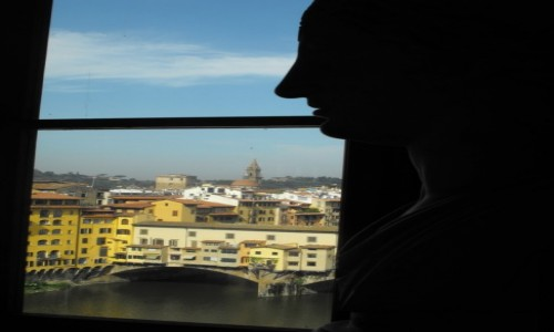 Zdjęcie WłOCHY / toskania / Florencja / rzezby maja widok