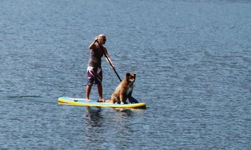 Zdjęcie WłOCHY / Lombardia / Jezioro Como / Stand Up Paddle ze sternikiem