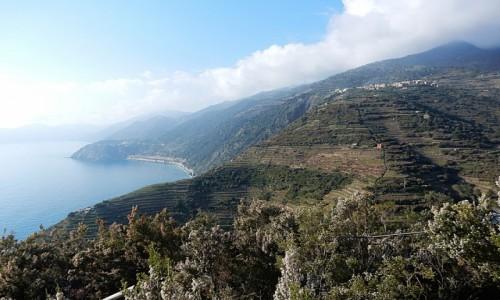 Zdjęcie WłOCHY / Liguria / na szlaku / Cinque terre