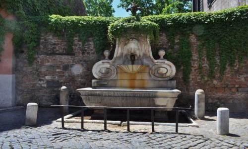 Zdjecie WłOCHY / Lazio / Rzym / Zatybrze, fontanna jakich wiele