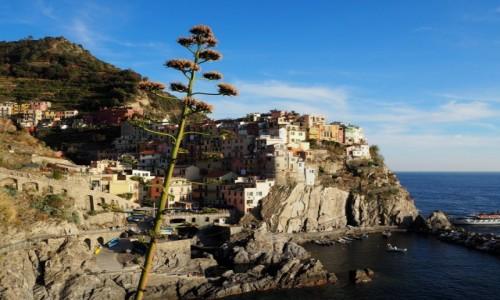 Zdjęcie WłOCHY / Liguria / Cinque Terre / Manarola