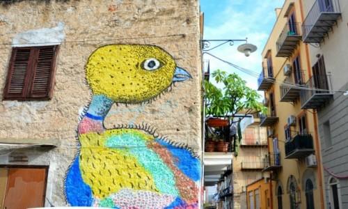 Zdjęcie WłOCHY / Sycylia / Palermo / Palermo street (art)