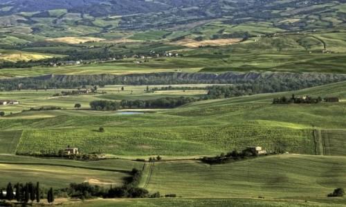 Zdjęcie WłOCHY / Toskania / Okolice Pienzy / Toskania