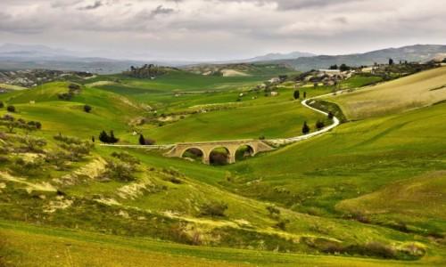 Zdjęcie WłOCHY / Sycylia / Droga z Enny do Caltagirone  / Styczniowa zieleń