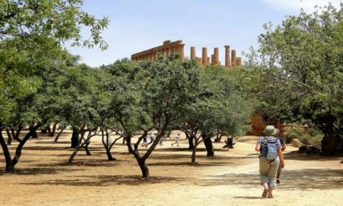 Zdjecie WłOCHY / Sycylia / Agrigento / Z podróży po Sycylii - Agrigento (10)