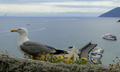 Zdjecie WłOCHY / Wyspy Liparyjskie / Lipari. / Liparyjskie wspomnienie.
