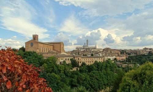 Zdjecie WłOCHY / Toskania / Siena / Odwieczna rywalka Florencji