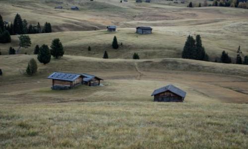 WłOCHY / . / . / Alpe di Siusi