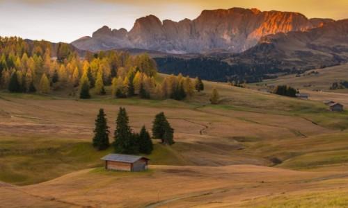 Zdjecie WłOCHY / Dolomity / braies / Alpe di Siusi