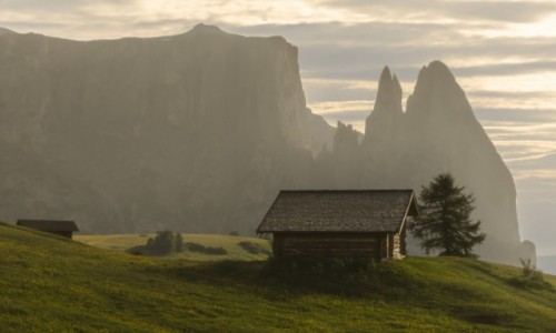 Zdjecie WłOCHY / Dolomity / Alpe di Siusi / Sciliar