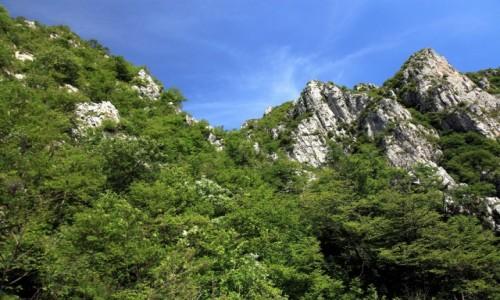 Zdjecie WłOCHY / Lombardia / Góra San Martino / Pod błękitnym niebem