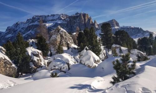 Zdjecie WłOCHY / Tyrol Południowy / Dolomity / Dolomity