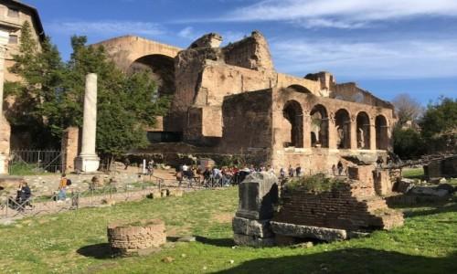 Zdjecie WłOCHY / Lacjum / Rzym / Forum Romanum