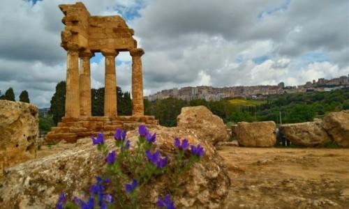 Zdjecie WłOCHY / sycylia / agrigento  / Dolina  świątyń