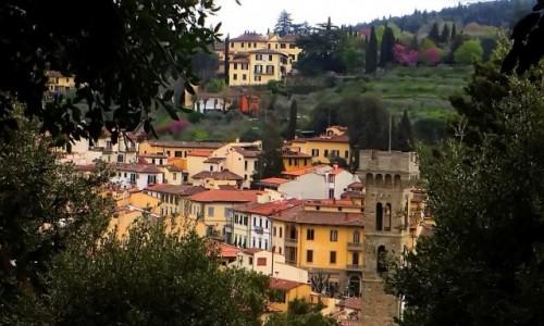 Zdjęcie WłOCHY / Toskania / Fiesole / domy wśród drzew