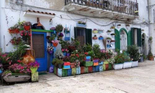 Zdjecie WłOCHY / Puglia / Bari / Włoska robota