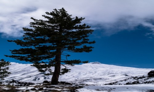 Zdjecie WłOCHY / Sycylia / Etna / śniegi Etny