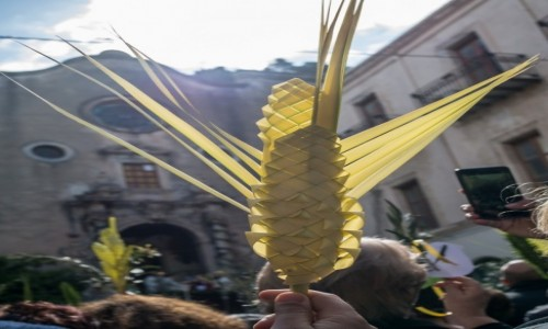 Zdjecie WłOCHY / Sycylia / Cefalu / Domenica delle Palme