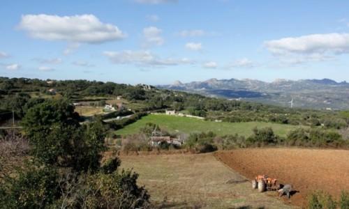 Zdjecie WłOCHY / Sardynia / Luras / Region Gallura