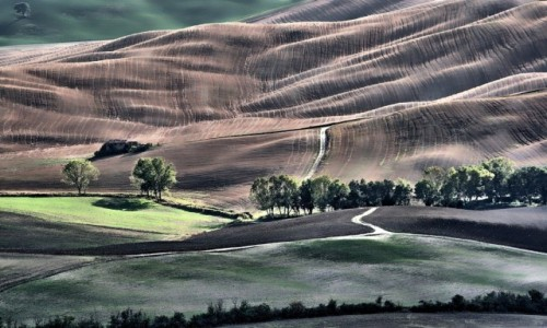 Zdjęcie WłOCHY / Toskania / Pienza / Toskania