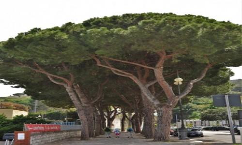 Zdjęcie WłOCHY / Lazio / Gaeta / Gaeta