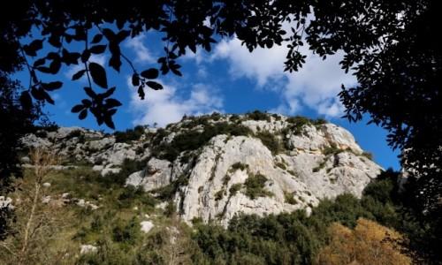 Zdjecie WłOCHY / Sycylia / Cavagrande del Cassibile / W kanionie Cavagrande del Cassibile