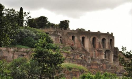 Zdjecie WłOCHY / Lazio / Rzym / Rzym, Pallatyn