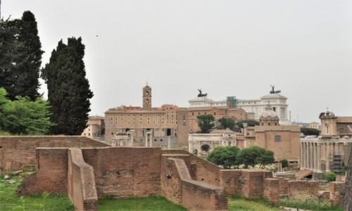 Zdjecie WłOCHY / Lazio / Rzym / Rzym, Forum Romanum