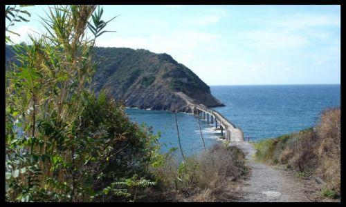 Zdjecie WłOCHY / brak / isola di procida / isola di vivara