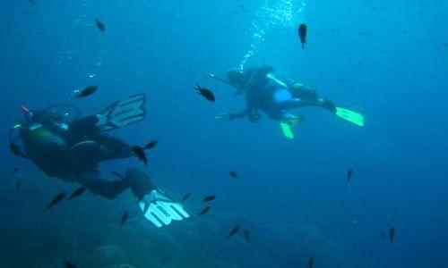 Zdjecie WłOCHY / sardenia / san teodoro i  okolice / na miejscu jest bardzo duzo szkòl ktòre prowadza kursy nurkowania