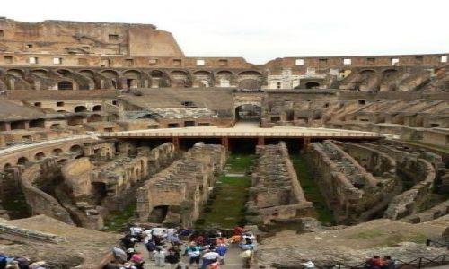 Zdjecie W�OCHY / brak / Rzym / Koloseum