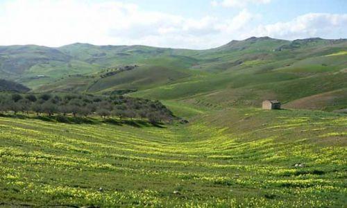 Zdjecie WłOCHY / Sycylia / Okolice Etny / Konkurs Wiosna