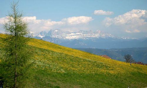 WłOCHY / Południowy Tyrol / Dolomity / Panorama Dolomitów