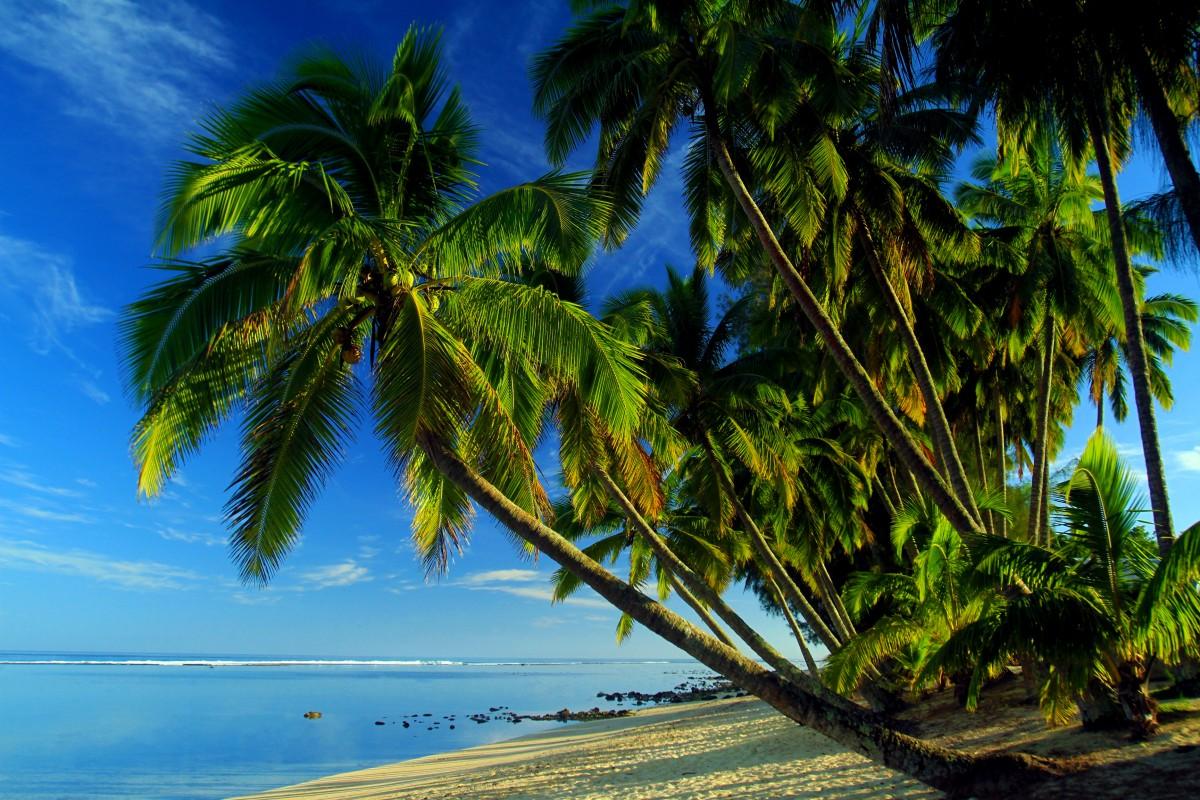 Zdjęcia: Plaża, Plaża, WYSPY COOKA