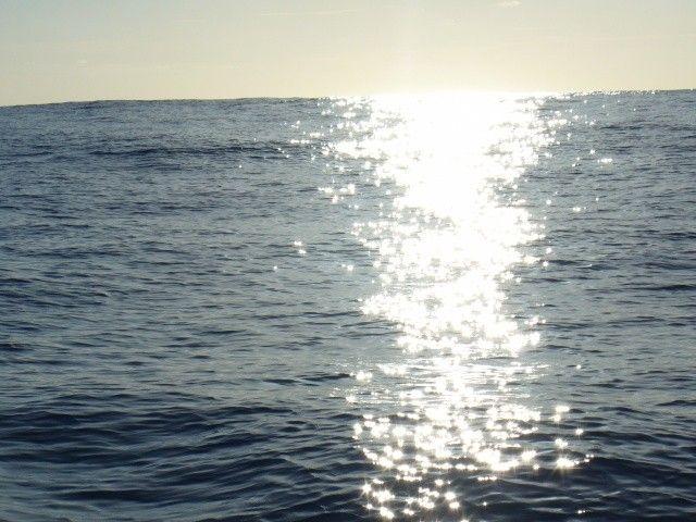 Zdjęcia: między Karaibami a Azorami, Atlantyk, Fala w promieniach słońca, WYSPY KARAIBSKIE
