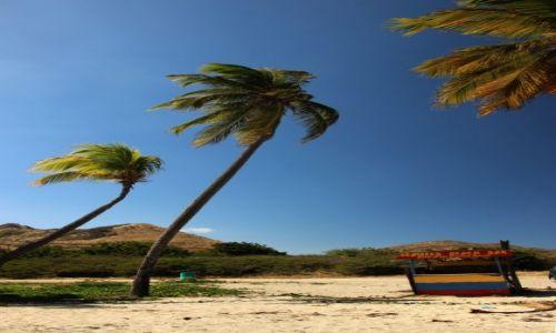 Zdjęcie WYSPY KARAIBSKIE / - / Saint Kitts i Nevis / Saint Kitts / bar na plazy
