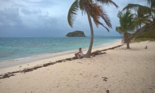 Zdjecie WYSPY KARAIBSKIE / Martynika / Tobago Cays / Union Islands
