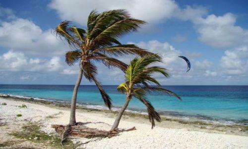 Zdjecie WYSPY KARAIBSKIE / Bonaire / brak / na wietrze