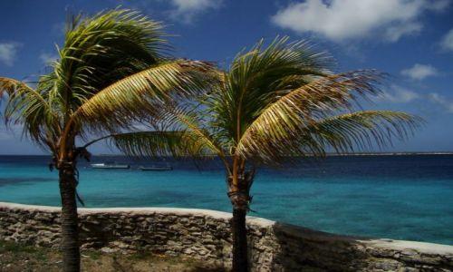Zdjecie WYSPY KARAIBSKIE / Bonaire / brak / wpatrzone w morze