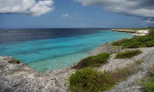 Zdjęcie WYSPY KARAIBSKIE / Bonaire / brak / nad brzegiem morza 1