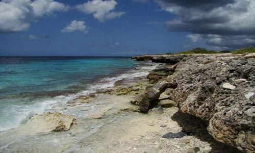 Zdjęcie WYSPY KARAIBSKIE / Bonaire / brak / nad brzegiem morza 2